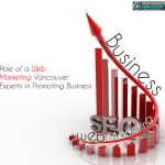 Role of a Web Marketing Experts in Promoting Business